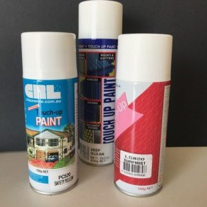 Paint & Silicon